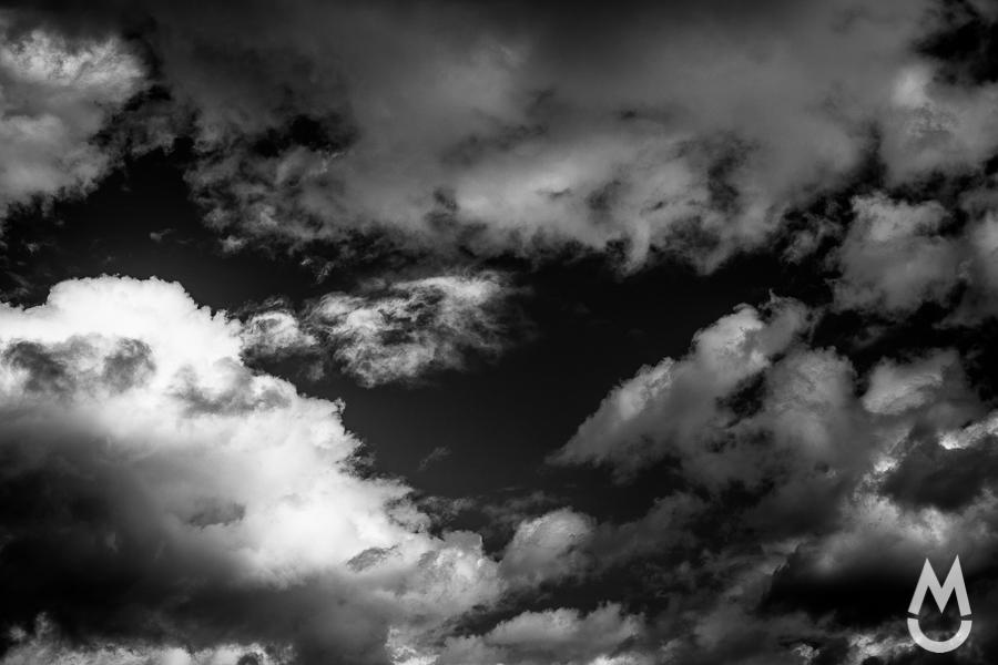 Landscape-2759
